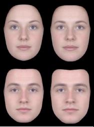 facial-rejuvination-4